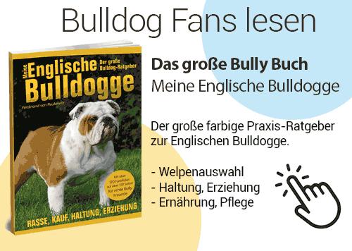Das große Praxis-Buch zur Rasse der Englischen Bulldogge